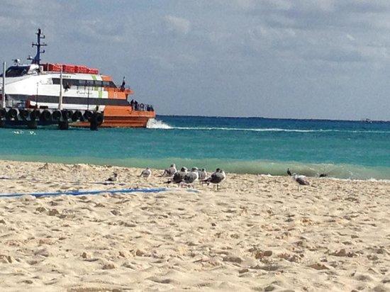 Playacar Palace: Looking toward ferry terminal