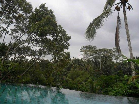 Puri Gangga Resort: View from the pool