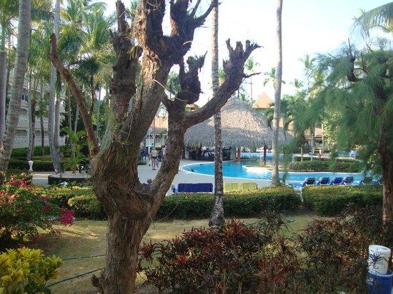 Vista Sol Punta Cana : Vista do nosso quarto para a piscina principal