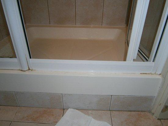 Comfort Inn London - Edgware Road: porta della doccia camera 107