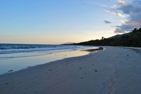 Ferntree Rainforest Lodge: The beach (you have to walk to get here)