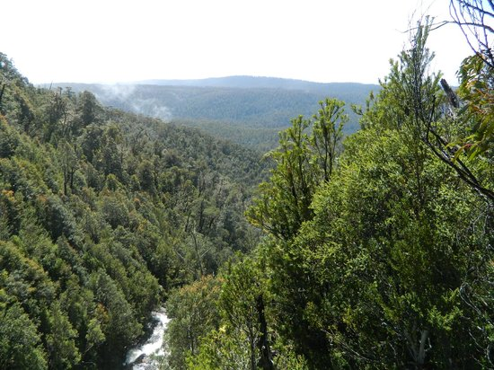 Hartz Mountains National Park: view from top