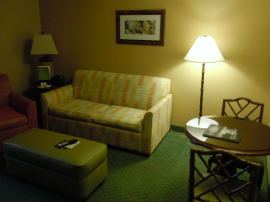 Doubletree Suites by Hilton Naples: TV seating area