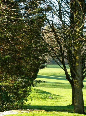 Donnington Valley Hotel, Golf & Spa: At the  back of the hotel