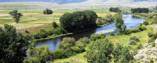 The Complete Fly Fisher : View of the Big Hole River near the lodge.