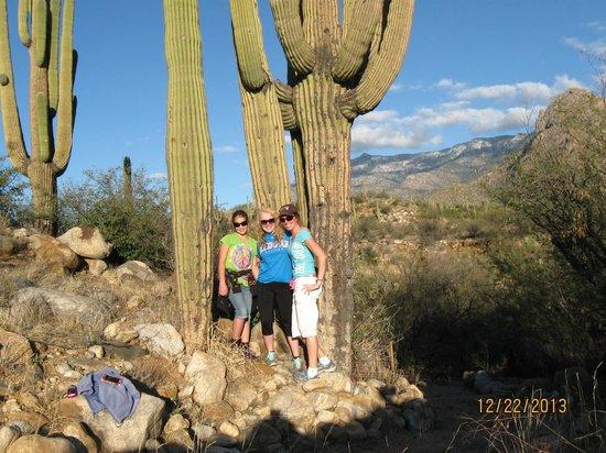 Catalina State Park: Girls hiking day!