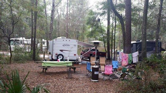 Suwannee River State Park: Campsite #19