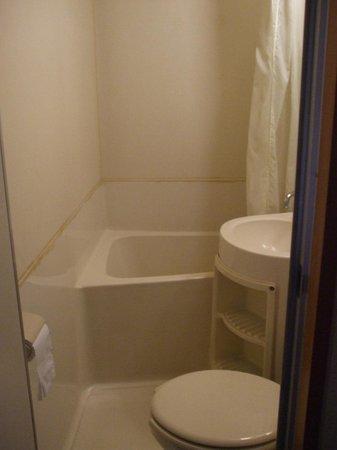 New Takenoya Ryokan: Pod style private bathroom.