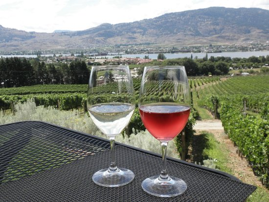 Nk'Mip Cellars Patio Restaurant: Wine with great view