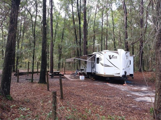 Suwannee River State Park: Campsite #15 (semi secluded)