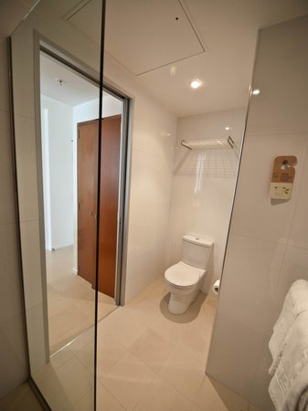 Novotel Christchurch Cathedral Square Hotel: Pocket door leads to the rest of the room