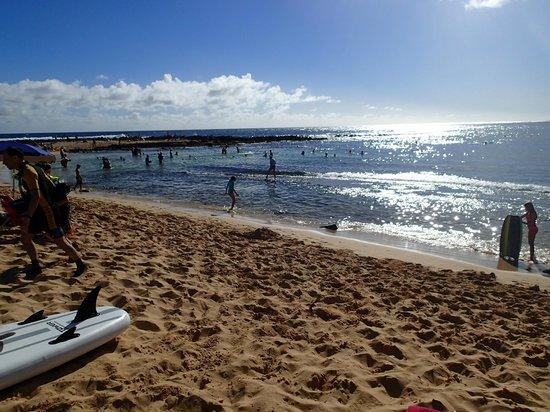 Poipu Beach Park: Poipu Beach snorkel area - Christmas Day 2013