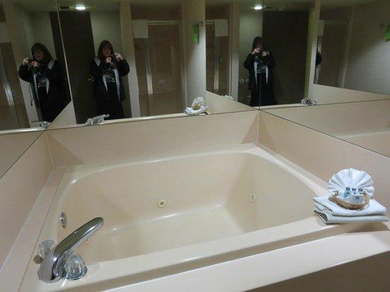 Hampton Inn Phoenix/Scottsdale at Shea Blvd: two person whirlpool