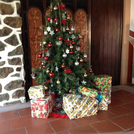 Casa Sun & Moon: They decorated for Christmas!