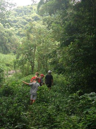 Rainforest hike in Utuado, Puerto Rico near Casa Grande Mountain Retreat