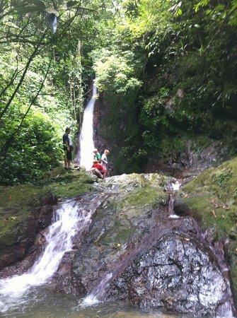 Hike through rainforest from Casa Grande Mountain Retreat