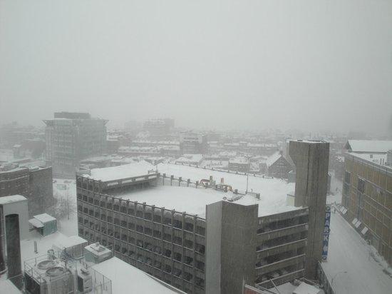 Hilton Boston Back Bay : 2013 blizzad  view frm room