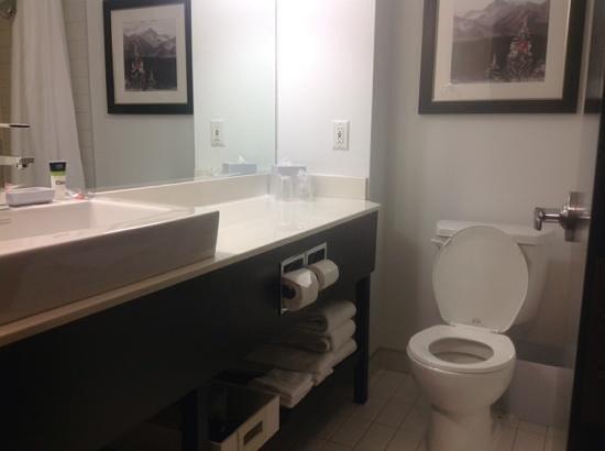 Four Points by Sheraton Calgary West: washroom