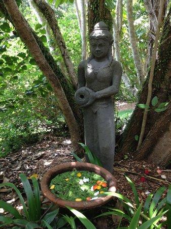 Gaia Retreat & Spa: Beautiful gardens