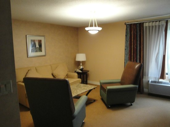 DoubleTree Hotel Boston/Bedford Glen: living room area