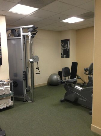 Chicago Marriott Suites Deerfield : Workout area - had to move the bike to use the equipment
