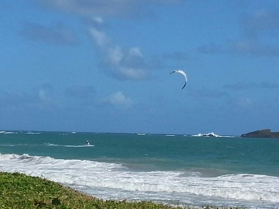 Sandy Beach: Kite surfer