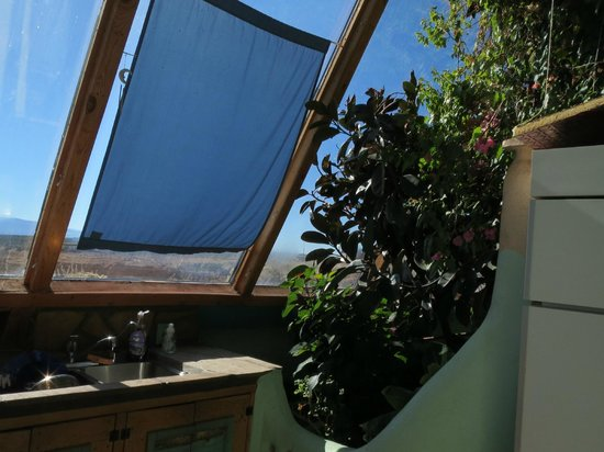 Earthship Biotecture : lovely plants and loads of sunshine
