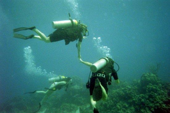 Discount Excursions, Ltd. : under the cayman sea
