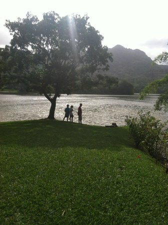 Casa Grande Mountain Retreat : Rancho Marina Restaurant, Utuado, Puerto Rico