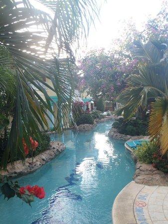 Sandals Royal Caribbean Resort and Private Island : Swim Up Suites