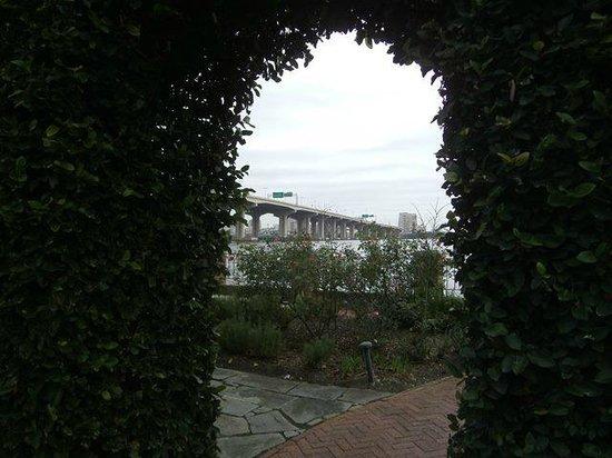 The Cummer Museum of Art and Gardens: Gardens