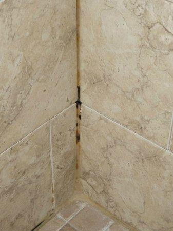 Beso Del Sol Resort: shower mold