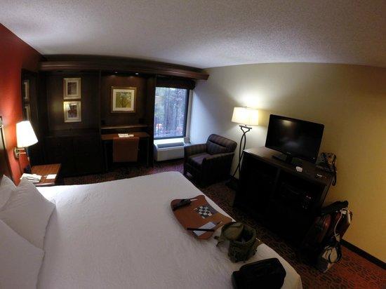Hampton Inn Atlanta - Cumberland Mall / NW: Room