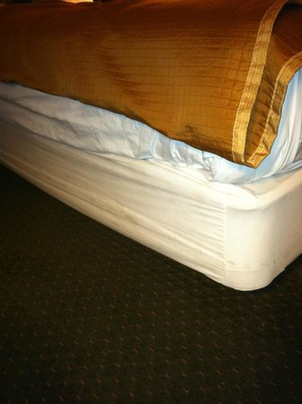 Travelodge Suites East Gate Orange: box spring cover dirty