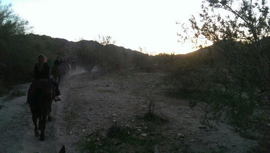 Arizona Horses (Ponderosa Stables and South Mountain Stables): Sunset ride