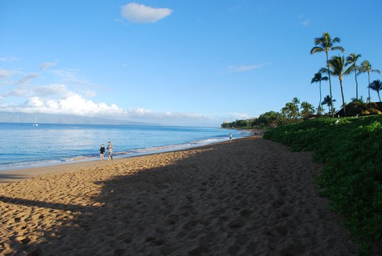 Royal Lahaina Resort : view of beach