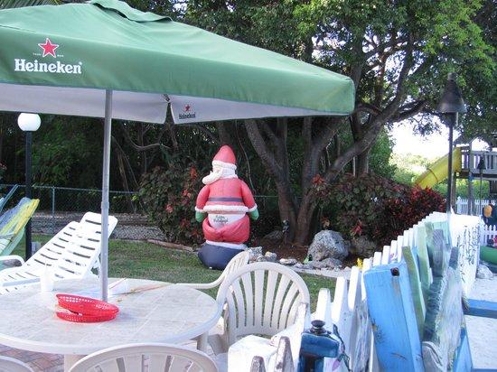Ocean View Inn and Sports Pub : Christmas decoration! Lol!