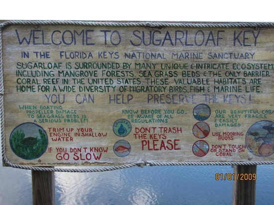 Sugarloaf Lodge: Protect the Environment