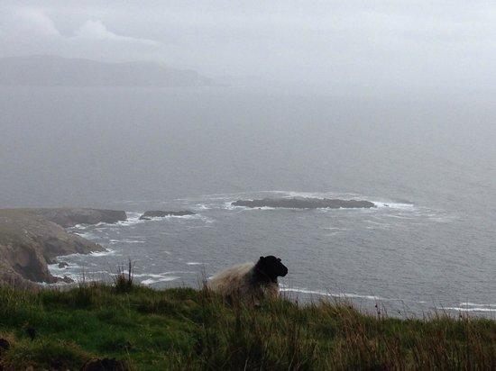 Achill Water's Edge: Achill