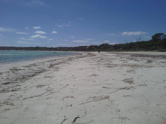 Lovell Dene B&B: beach