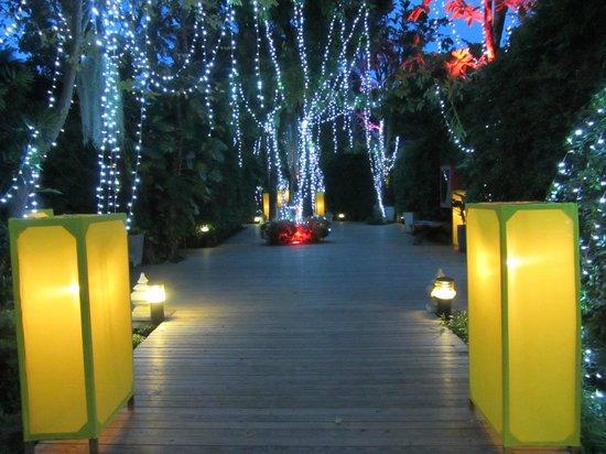 Tango Luxe Beach Villa: The outdoor corridor by night