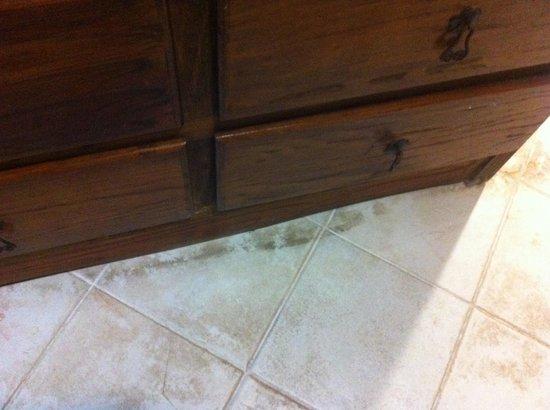 Hotel Copa : Hotel en Playa del Carmen : Filthy floor