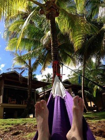 Yemaya Island Hideaway & Spa: love the hammocks ...