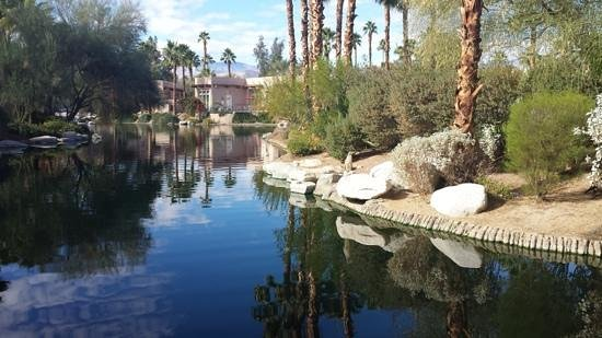 Hyatt Regency Indian Wells Resort & Spa : beautiful ground