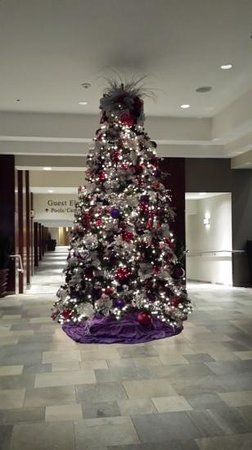 Hyatt Regency Indian Wells Resort & Spa : xmas decor