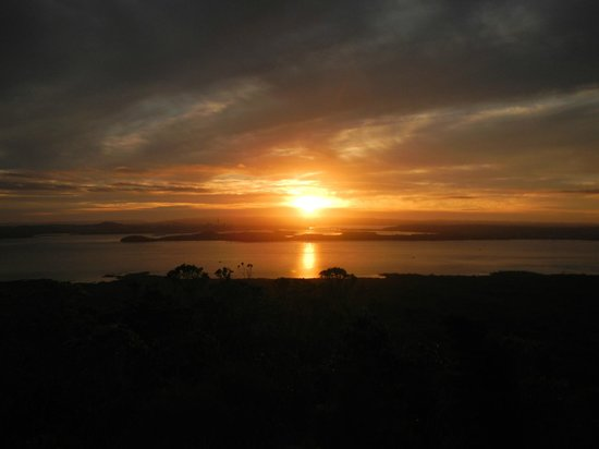 Auckland Sea Kayaks: Sunset from the top of Rangitoto