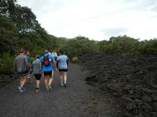 Auckland Sea Kayaks: Walking up to the top of Rangitoto