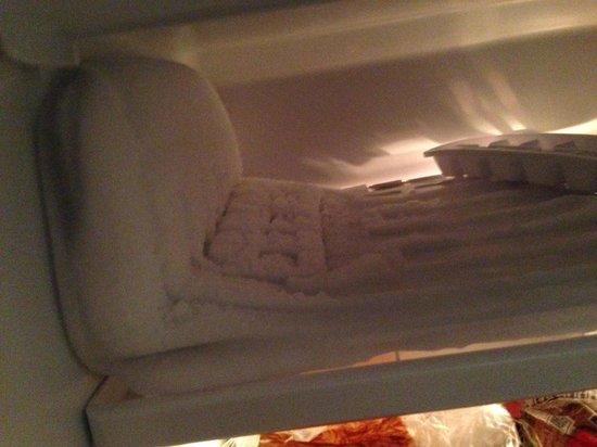 Executive Hotel Cosmopolitan: Freezer in fridge