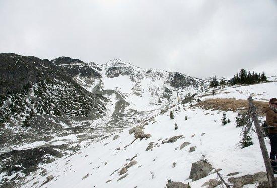 Peak 2 Peak Gondola: Blackcomb Whistler