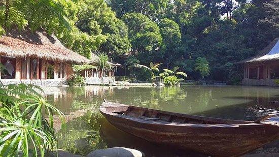 Imah Seniman: the pool